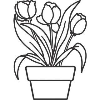 Тюльпаны А4